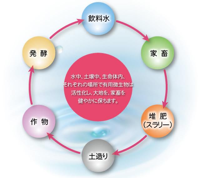 「農」と「生命」の活性誘導システム